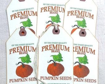 Fall Pumpkin Seeds Feedsack Gift or Scrapbook Tags  #1249
