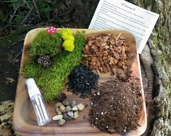 SALE!!*****THE Kit - DIY Terrarium Kit - All you need is the Container