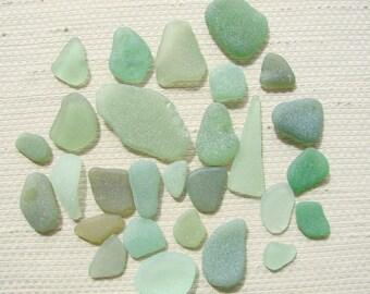28 Piece Bumper Pack Seaglass Treasures (SG1871) Olive and Mixed Herb Garden Green Mediterranean Beach Glass