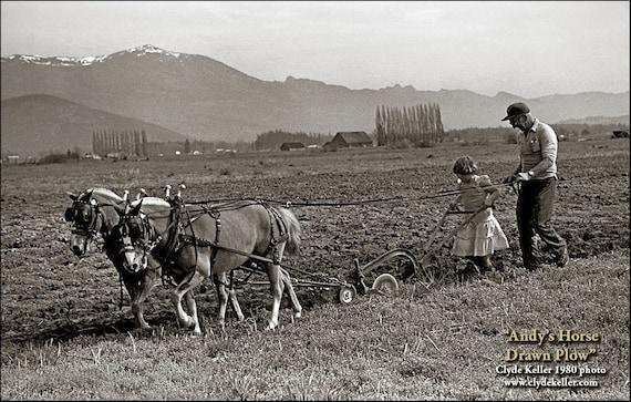 HORSE DRAWN PLOW, Skagit Valley, Washington, Clyde Keller Photo, Fine Art Print, toned Black and White, Signed, Treasury