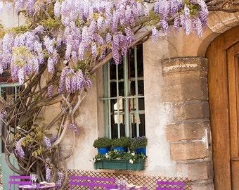 Paris Photography, Purple Wisteria on Ile de la Cite, Spring in Paris, Nature Photography, Purple, Fairytale, French, Paris Garden