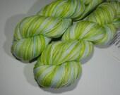 SALE - Sock Garden - Hand Dyed Yarn