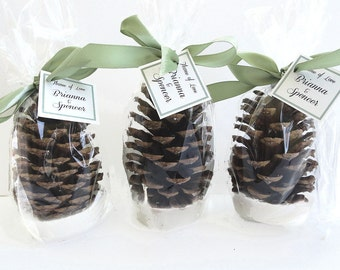 100 Pine Cone Fire Starter Winter Wedding Favors - Table Decorations  - Rustic Country All Natural Wedding Favor Ideas by Nature Favors
