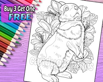 Beautiful Bunny - Adult Coloring Book Page - Printable Instant Download
