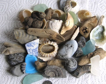 50 Large Surf Tumbled Assorted Fragments Art Mosaic Craft Supplies (1906)