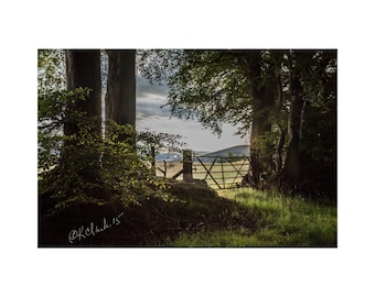 The Pasture Gate Fine Art Photography Scotland Landscape Rural Dreamy Romantic Sunset Rustic Soft Green Home Decor Large Wall art Magical