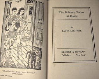 Set of Two Bobbsey Twins Books * childrens books * antique books