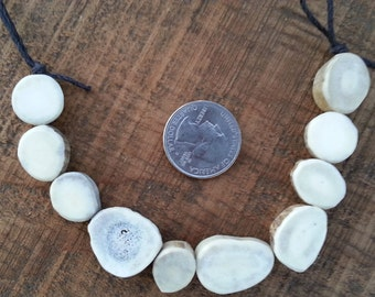 Deer Antler Coin Beads- Strand as Shown- 10 Pieces Lot No. 48672LB