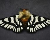 Fabric sculpture -   Hemileuca magnifica Moth fiber art