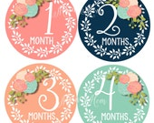 FREE GIFT, Baby Girl Month Stickers, Monthly Baby Stickers, Photo Prop, Floral Roses Newborn Bodysuit Stickers,  Pink, Coral, Navy, Teal