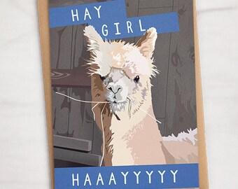 "Alpaca ""Hay Girl Haaayyyyy"" llama greeting card, 5""x7"" A7 // Hey Girl Hey, alpaca greeting card, funny greeting cards, funny birthday cards"