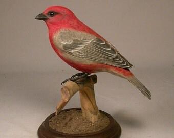 Pine Grosbeak Hand Carved Wood Bird Carving