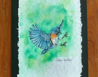 EASTERN BLUE BIRD, Original Bird Painting in Watercolor on Cotton Paper by Susana Caban