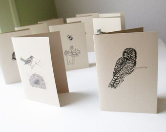 Note card set, 10 cards for half price. Thank you notes. Boxed note cards, mix & match. 10 cards, your choice.