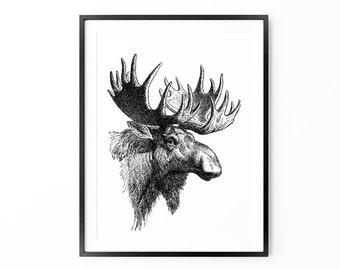 Moose Print , Animal Poster Print , Antler , Woodlands Home Decor, Large Wall Art, Oversized Art,