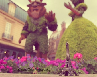Eiffel Tower, Fine Art Photograph, Photo, Print, Beauty and the Beast, Fairy Tale, Surreal, France, French, Flowers, Travel, Flowers,