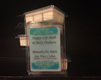 Reusable Scented Wax Melts