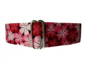 2 Inch Martingale Collar, Cherry Blossom Martingale, Wide Dog Collar, Cherry Blossom Dog Collar, Greyhound Martingale, Asian Dog Collar