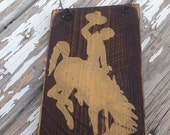 Bucking Horse Wire Hanging Decor, Hand Painted Sign/Restroom Sign-Home Decor, Wyoming Steamboat Horse, Small Wall Art