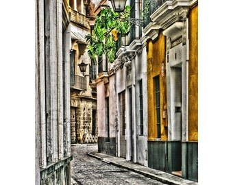 Fine Art Digital Print of Street in Sevilla Spain