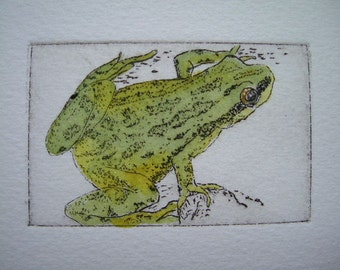 Frog IV