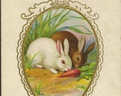 Pair of Bunny Rabbits With Carrot ~ Embossed Vintage Easter Postcard