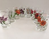 Brockway Flower of the Month Drinking Glasses- set of 8