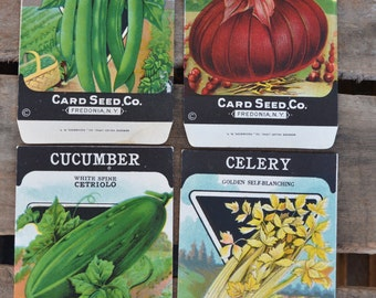 Lot of 4 Antique vintage 1920s Card Seed Co. seed packets Fredonia, NY Cucumber Pole Beans Celery Onion