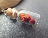 Scottish Rowan Berry Protection Necklace Bottle Vial Red and Silver Dried Flowers, Rowen, Jewelry from Scotland, Good Luck Charm