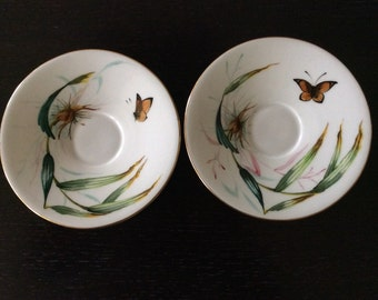 Set of Two Vintage Hand Painted Plates / White Porcelain Botanical Small Plates / English China Soucers Butterflies and Flowers