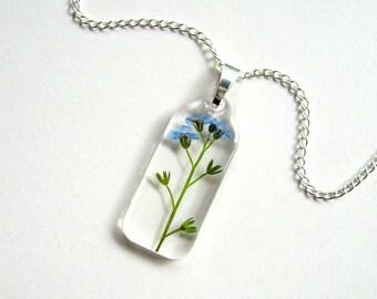 Forget Me Not - Real Flower Garden Necklace - botanic jewelry, pressed flower, myosotis, Victoria Blue, flower necklace, modern, ooak, gift