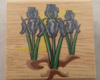 Canadian Maple Collection Iris Flowers Stp 4004 Wooden Rubber Stamp