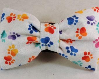 Dog Flower, Dog Bow Tie, Cat Flower, Cat Bow Tie  - Paw Prints Two