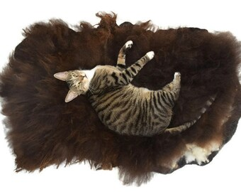 Cat Bed - Hand Felted Wool Fleece Sheep-friendly Rustic Pet Rug- Navajo Churro Brown - Supporting American Small Farms
