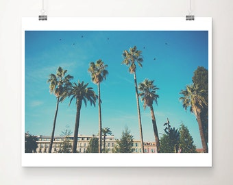 palm tree photograph France photograph bird photograph Nice photograph french decor travel photography architecture photograph