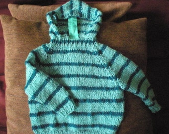 Hooded sweater 6 months