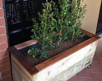 Rustic, natural outdoor planter, planter boxes, herbs/crawlers