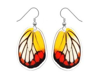 REAL butterfly wing earrings - butterfly jewelry, butterflies, insects, bug jewelry, bug art, sterling silver, dangle earrings