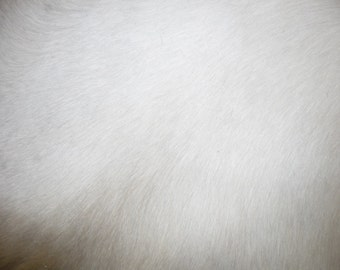 """Hair On Leather 8""""x10"""" Off-White HOH Cowhide 3.25 oz / 1.3mm PeggySueAlso #E1/3"""