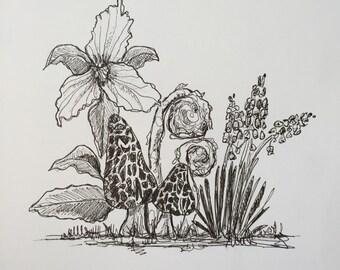 Spring art print, morel mushroom print, trillium print, fiddleheads print, grape hyacinth print, black and white art