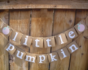 Little Pumpkin Banner - 1st Birthday Banner, Baby Shower, Photo Prop, Fall Birthday, Little Pumpkin Birthday Party