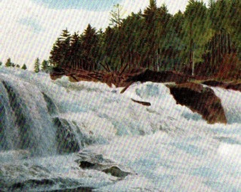 Antique UNDIVIDED Real Photo Souvenir Postcard Hiram Falls Maine1900-1905 EXCELLENT Posted Condition NO 2221