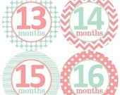 13-24 Months 2nd Year Baby Monthly Milestone Growth Stickers Mint Coral Pink Nursery Theme MS106 Baby Shower Gift Baby Photo Prop