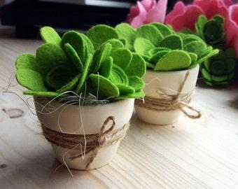 Green succulent favors - potted succulents, felt succulent, succulent decor, succulent centerpiece, succulent arrangement, felt cactus