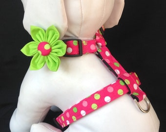Dog Harness Flower Set - Hot Pink Multi Colored Polka Dots - Size XS, S, M