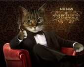 Most Interesting Cat In The World Pet Portrait