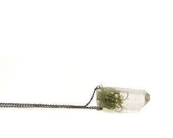 Moss Crystal