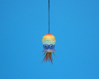 Mini, Rainbow, Spiraled Octopus Air Planter, Window Ornament, Free Shipping