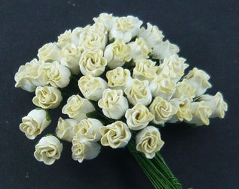 25 Cream White Hip Rosebuds