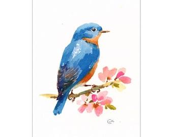 Bluebird - Original Watercolor Bird Painting 6 x 9 inches